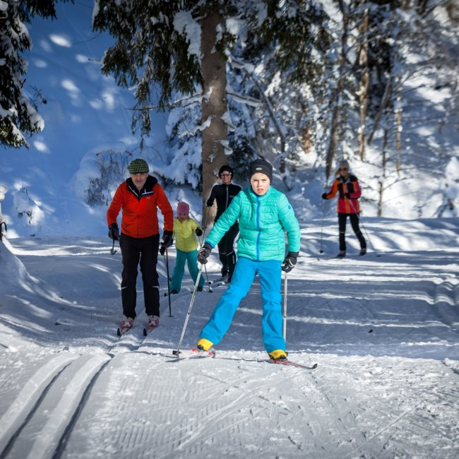 Cross-country skiing in Salzburg's Tennengau region